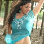 pazhakiyatheypirivatharka-de29-2009_49 copy