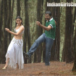 tamanna_and_karthi_in_paiya