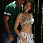 tamanna_and_karthi_in_paiya_81