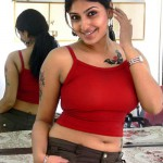 tamil actress pics monica tamil girl