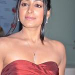 actress-padma-priya-sizzles-11