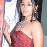 actress-padma-priya-sizzles-7
