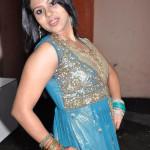 pachayapuram_press_meet_20091208_1172142800