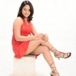 crossed legs thigh show south indian actress