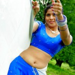 Half Saree Navel Actress in Blue Dhavani and Blouse