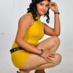 hot-tamil-actress-amruthuvalli-spicy-stills-pictures-photos-16 copy