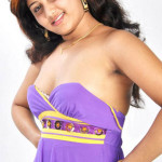hot-tamil-actress-amruthuvalli-spicy-stills-pictures-photos-21 copy