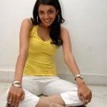 leg opening actress kajal agarwal pics