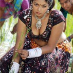 south indian actress cleavage village girls