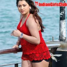 south-indian-glamour-actress-farahkhan-upskirt-pictures-16