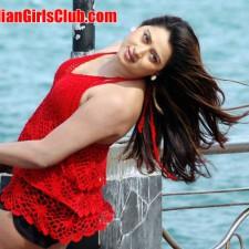south-indian-glamour-actress-farahkhan-upskirt-pictures-17