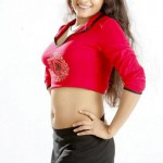 Stylish Cleavage Navel Darshini Pics