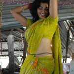 hip shaking dance indian girls saree