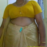 south indian aunty saree jacket