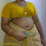 south indian aunty saree navel