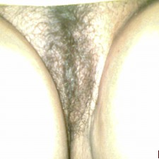 32 indian aunty sex sucking