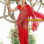gopika nude pics actress fake