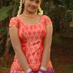 pavadai chattai girl hot 8